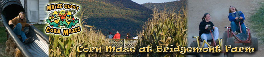Corn Maze at Bridgemont Farm - Quicksburg, VA
